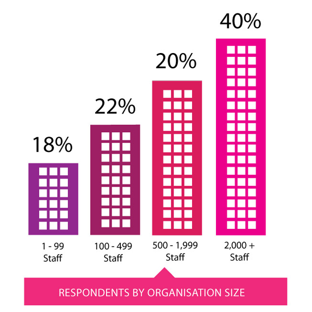 Respondents by organisation size